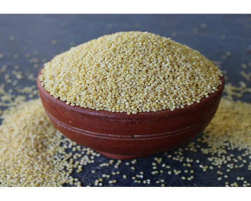 Indian-Kodo-Millet-Varagu-Rice-Suppliers-Tamil-Nadu